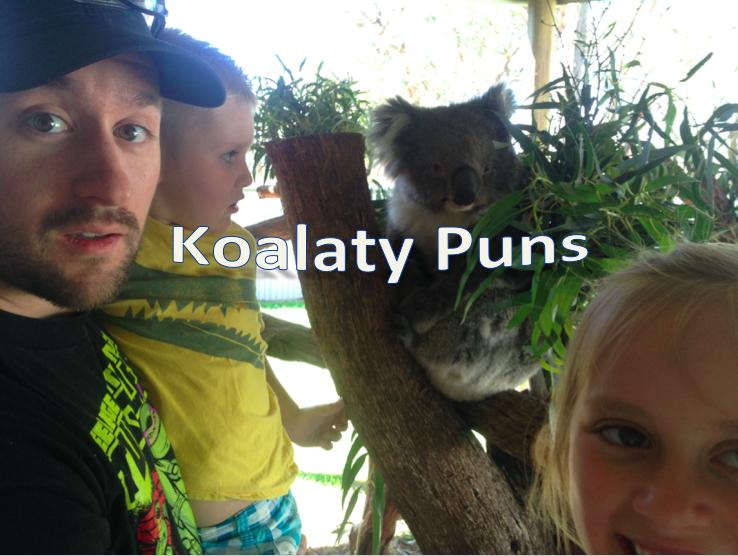 Koalaty Puns